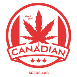 We'll back soon. Canadian Seed Lab.